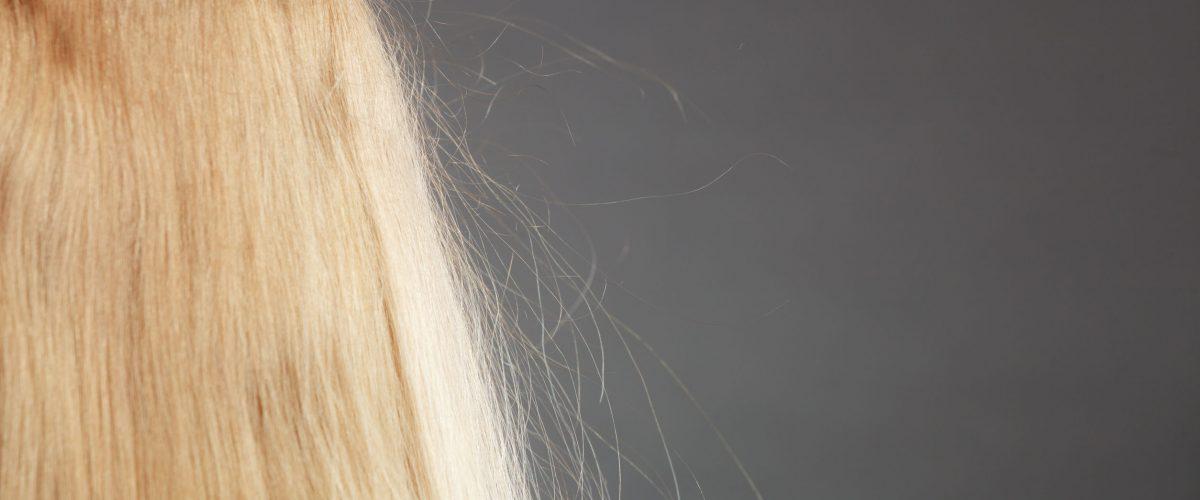 Jakie są sposoby na elektryzowanie się włosów?