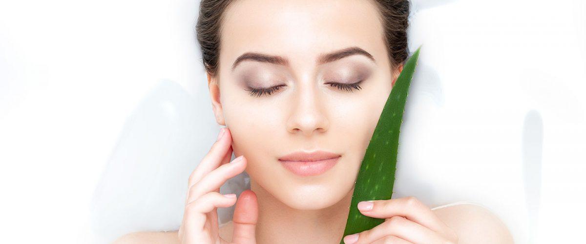 Aloes i jego właściwości w kosmetyce. Poznaj kosmetyki aloesowe, które musisz mieć!